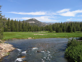 Soda Springs Meadow from the Soda Springs Bridge