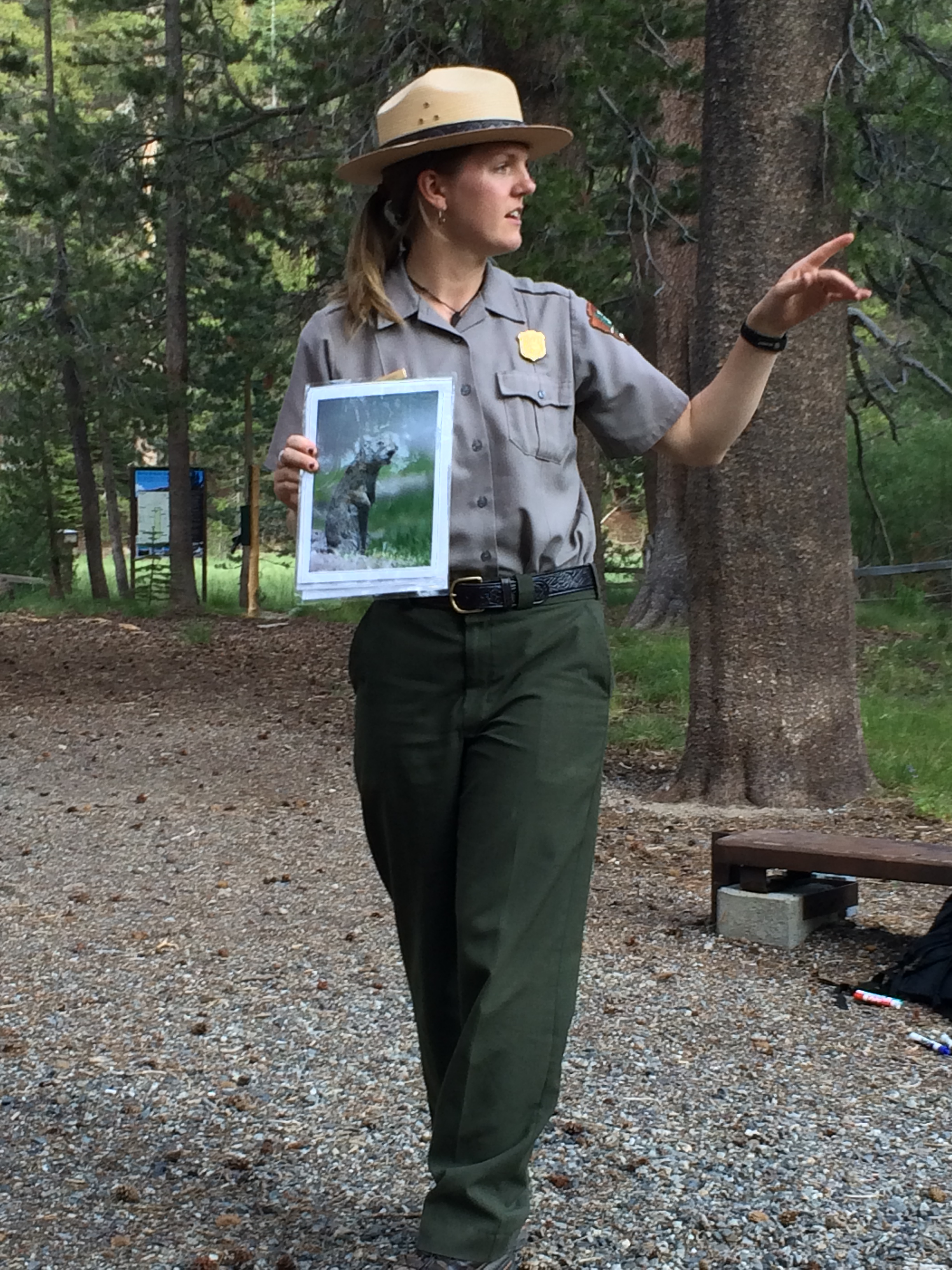 Ranger led Twilight Talk pointing out Belding's ground squirrel