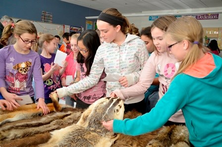 Elementary students feeling animal pelts