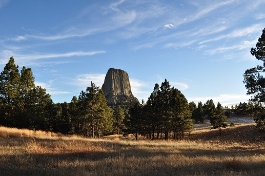 Devils Tower Rising above the trees