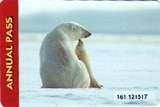 A park pass image of a polar bear and cub sitting on ice