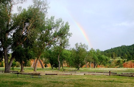 A rainbow arcing over a hillside with trees and grass in the foreground