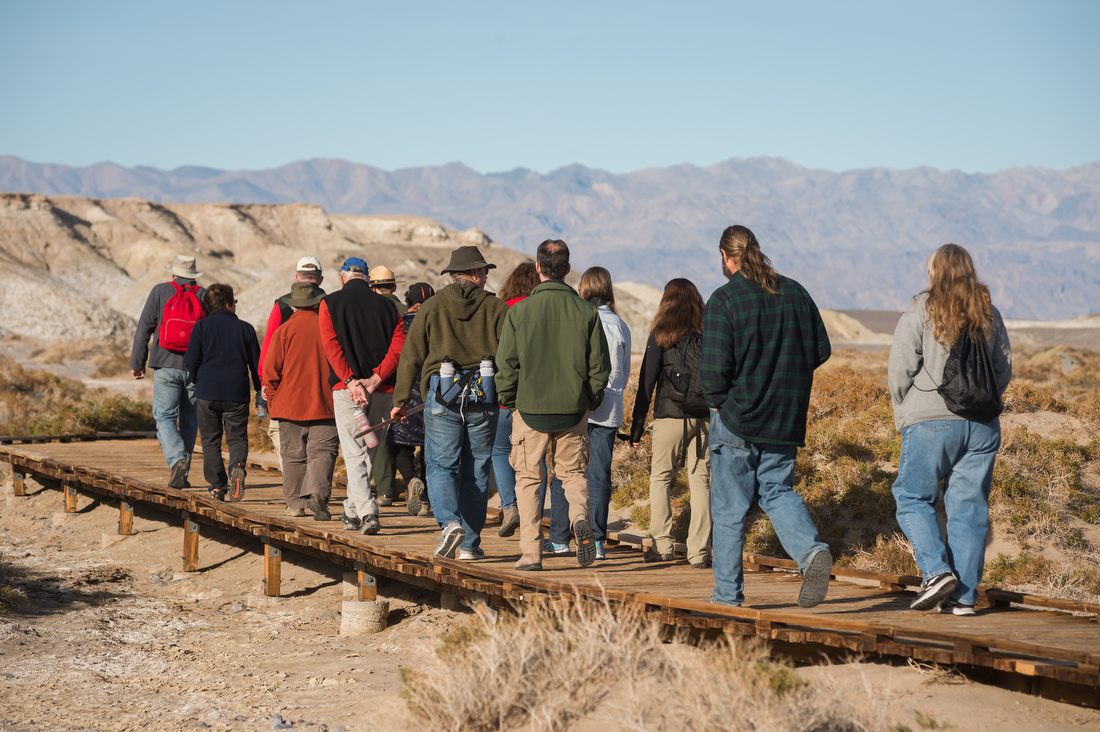A group of adults walk along a wooden boardwalk through a desert landscape with shrubby bushes.