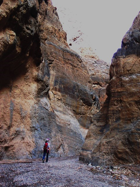 A hiker walks between polished narrow walls of Fall Canyon.