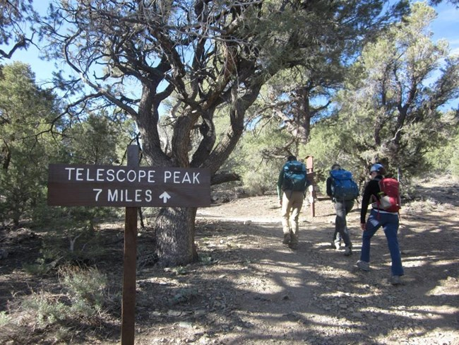 Three hikers walk up a forested trail past the sign to Telescope Peak