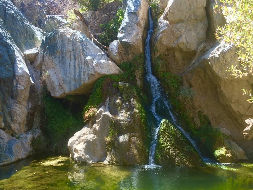 A desert waterfall cascades down into a sunlit pool surrounded by lush vegetation.