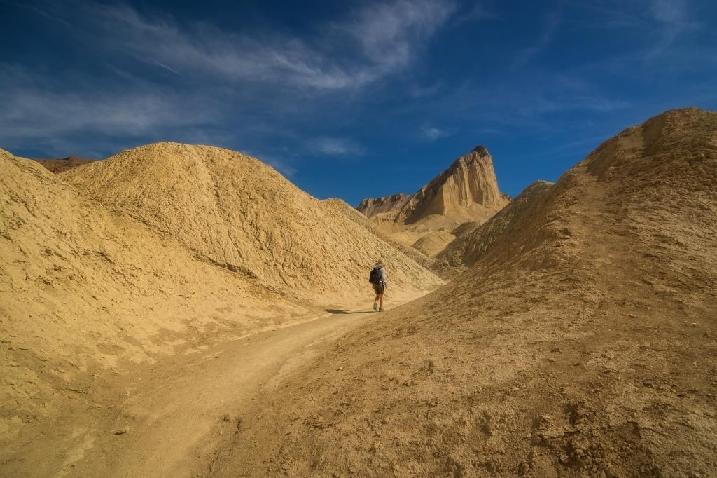 A hiker walks between golden colored badlands heading toward a towering outcropping known as Manly Beacon