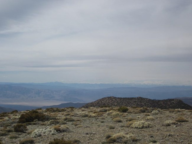 The view from Wildrose Peak looking down into a dry desert valley with large snow capped mountains on the far horizon.