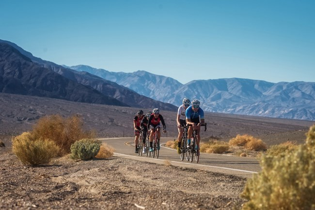 Five road bikers ride single file down paved road through Death Valley.