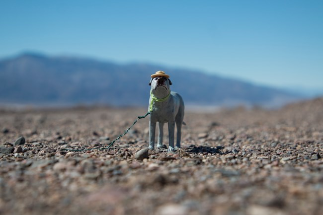 A tiny dog statue standing on a stark desert road.