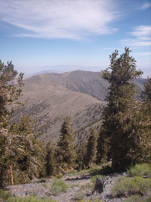 View in the Panamint mountains.