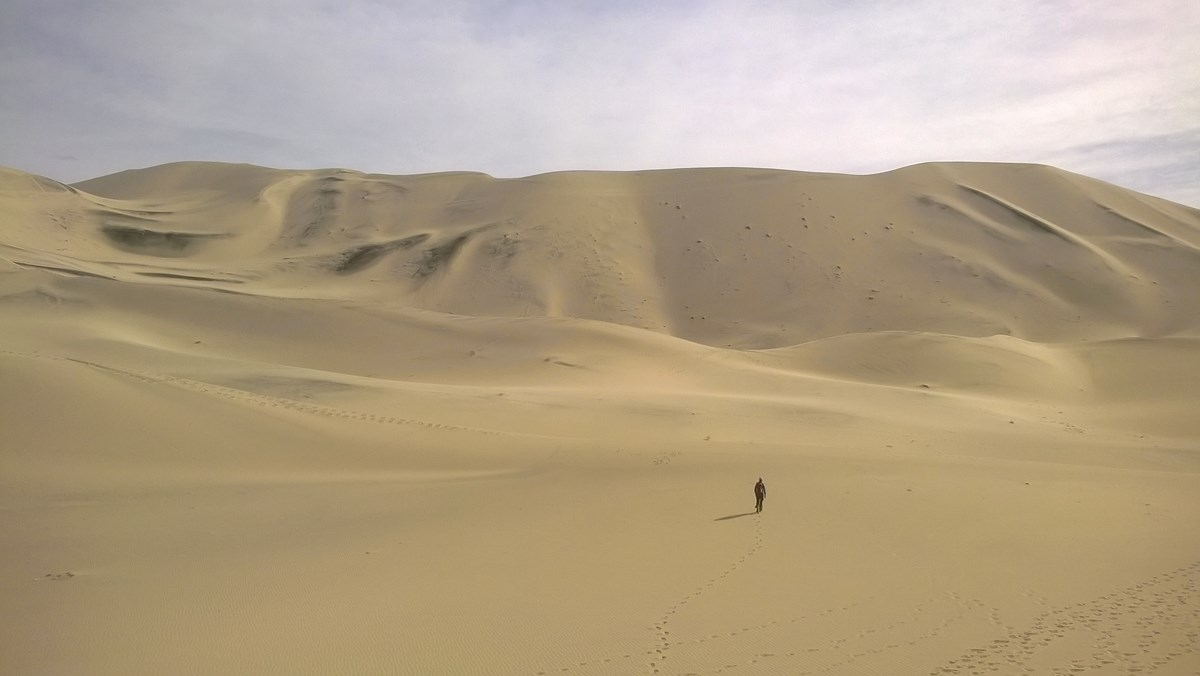 A hiker walks across the sand toward immensely high dunes