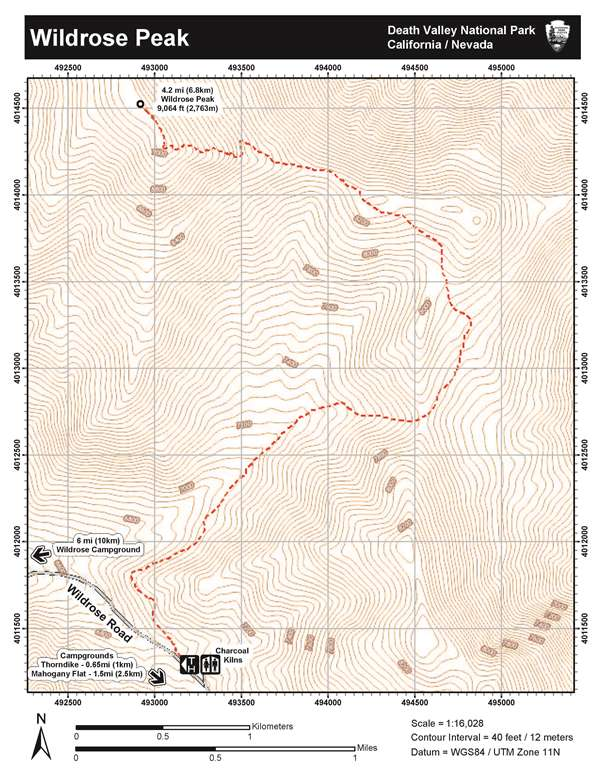 Image Of Topographic Map Of Wildrose Peak