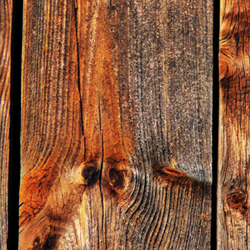 Close up of weathered wood