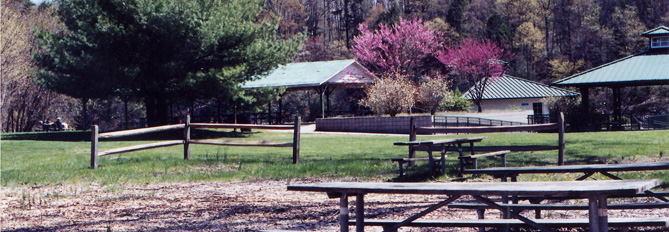 An enclosed area with picnic benches and trees in spring flower in the distance