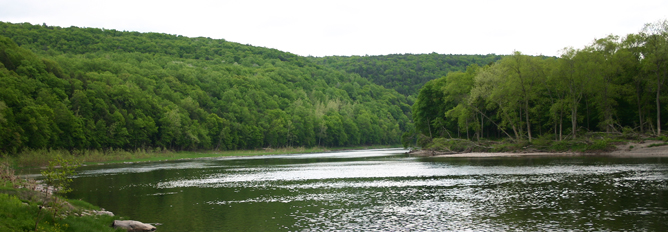 A broad bend in a river with forested shorelines, seen from river level