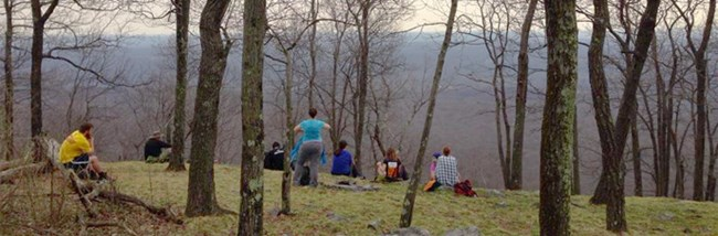 group of people sitting in open forest on an overlook