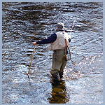 Fisherman with gear casting in a river or stream