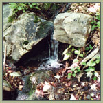 Small course of water streaming from between two rocks