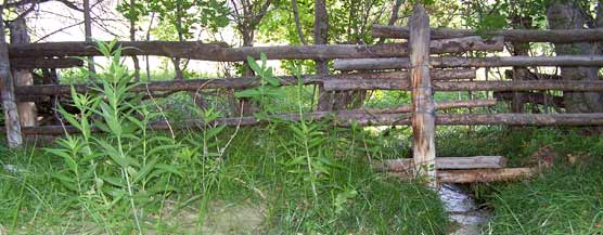 Historic fence at Hog Canyon