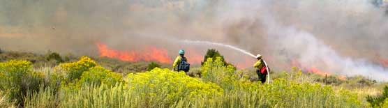 fire fighters spray water on a brush fire