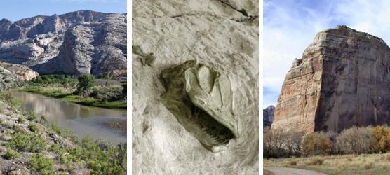 The Green River and Split Mountain (left), Camarasaurus skull in the Quarry Exhibit Hall (center), Steamboat Rock at Echo Park (right)