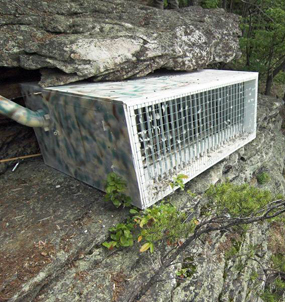 Hack box used for peregrine falcons at New River Gorge National River.