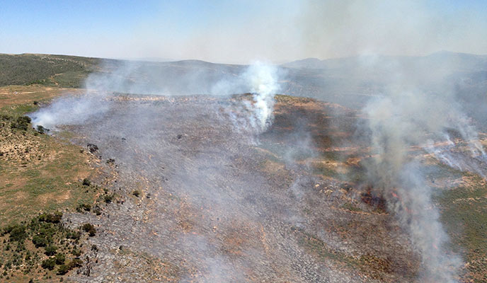 "Aerial image of the ""Wild"" fire"