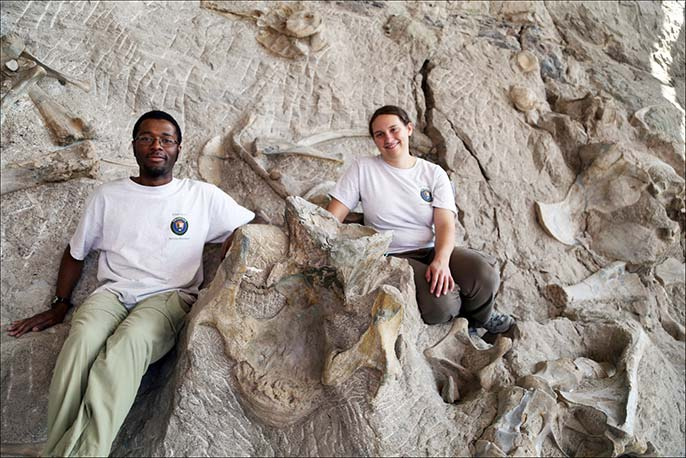 Taking a break from photographing fossils, paleo interns Ben Otoo and Nicole Ridgwell are dwarfed by a single neck vertebra of the giant plant-eating dinosaur Apatosaurus.