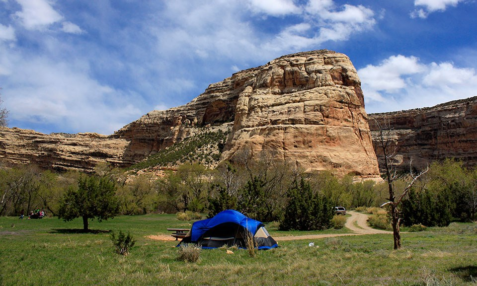 A blue tent sits in a grass field with rocky cliffs in the background