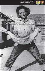 Click here to download a pdf of the Guide to Important Fish Species in Dinosaur National Monument