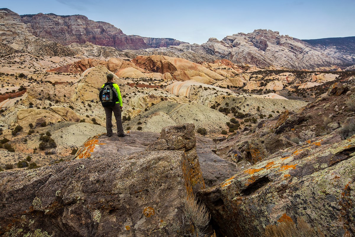 Person standing among widely colored rock layers