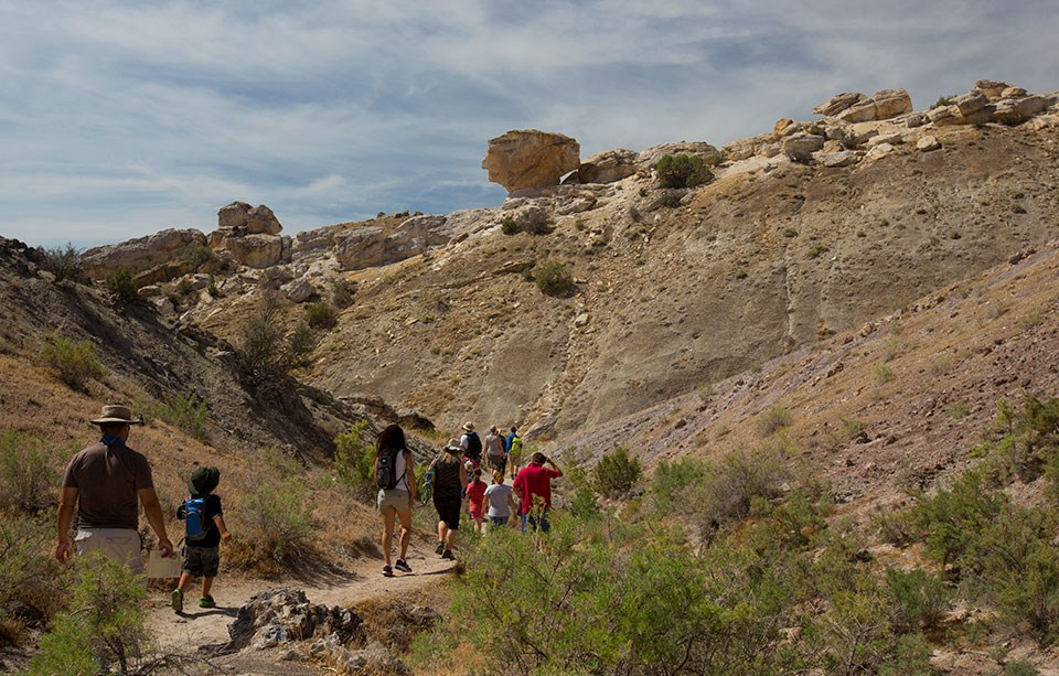 A group of 11 people walk on a trail trough a desert environment. In the background is a ridge with several outcrops of yellowish-tan rock.