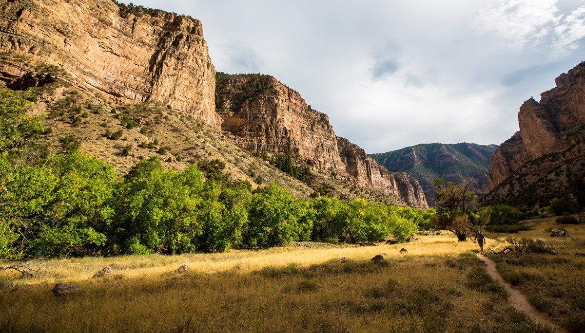 A hiker on a trail through golden brown grass surrounded by towering tan-colored cliffs.