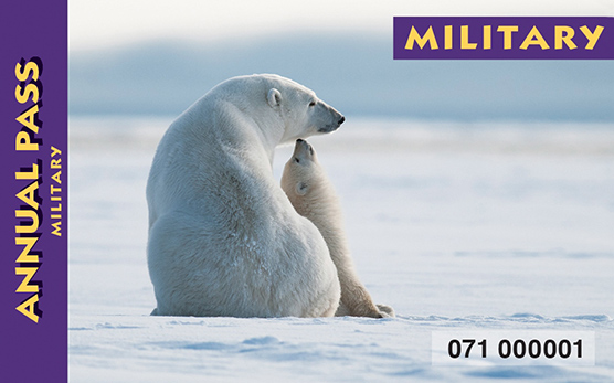 Photo of the 2016 Military Pass, card with a polar bear on it