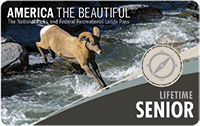 Image on pass shows bighorn sheep jumping over a river.