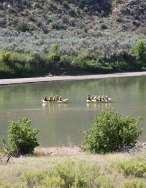 Two yellow rafts float down the Green River.