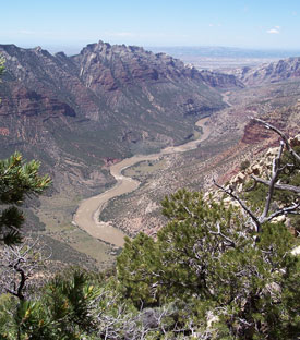 View of Green River and Split Mountain Canyon from canyon edge.