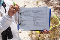 Baseline monitoring for potential oil spill effects