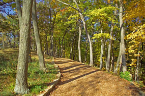 Hiking Trail at Effigy Mounds