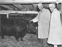The President and Nehru at the Eisenhower farm.