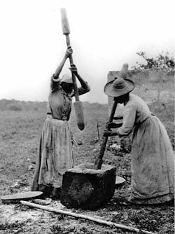 Nps ethnography african american heritage ethnography for African crops and slave cuisine