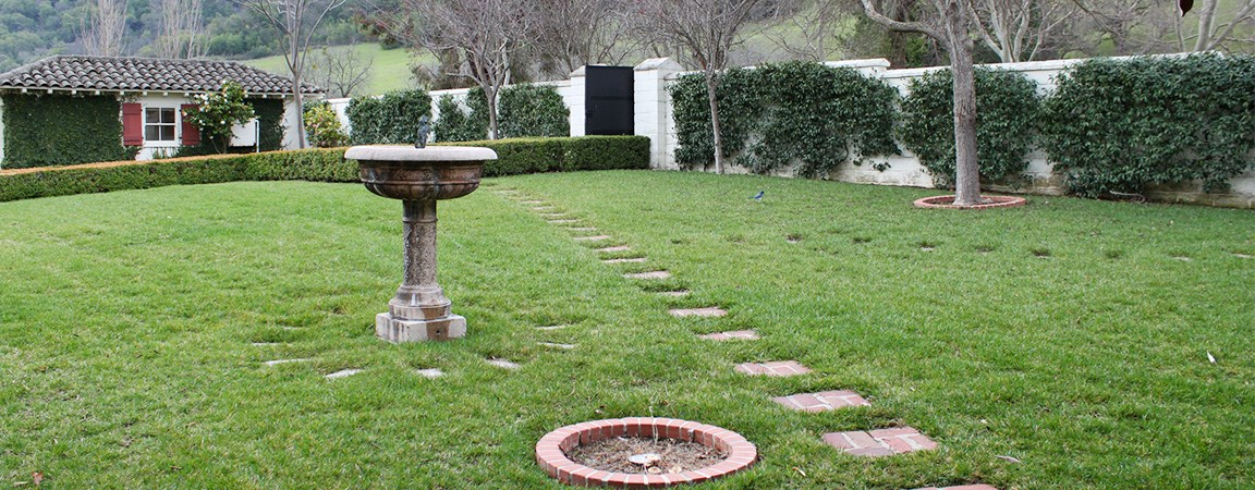 Green grass and bird bath in the courtyard.