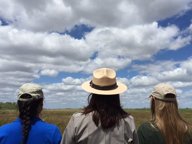 Two interns and a park ranger overlook the Everglades