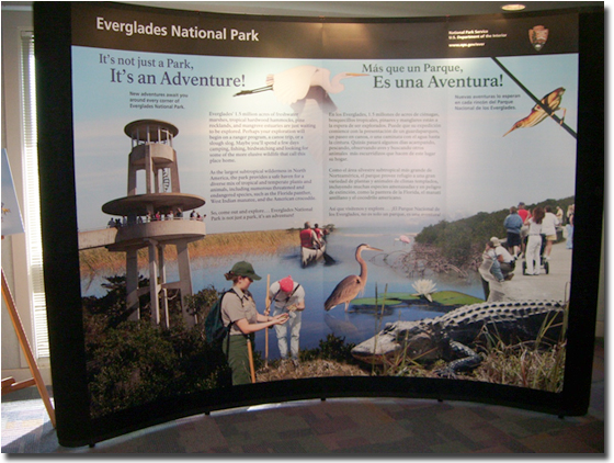 Everglades Large Wall Display