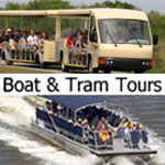 Boat and Tram Tours