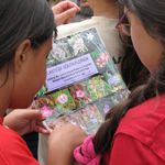 Students use plant ID card