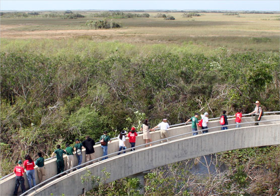 Students enjoy expansive views as they follow a ranger up to the Shark Valley observation tower.