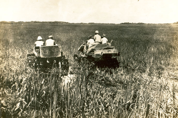 Gladesmen in a swamp buggy