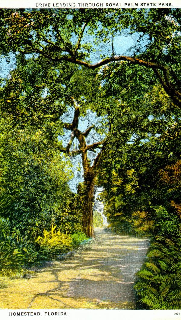 Old Ingraham Highway Postcard